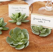 Succulent Place Card Holder Set of 4
