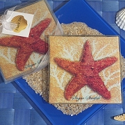 Starfish Design Glass Coaster (set of 2)