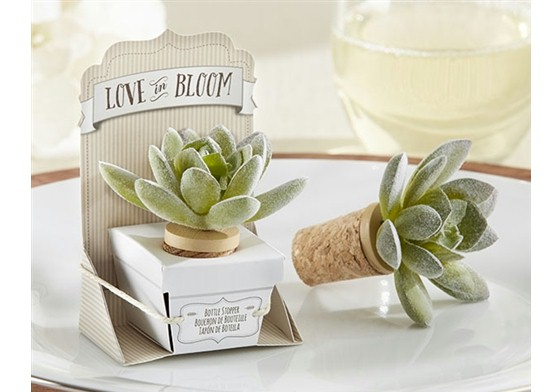DIY Succulent Wedding Favors- Wedding Favor Discount Blog