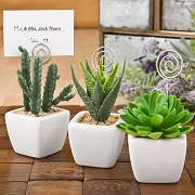 Potted Succulent Favor Place Card Holder - Assorted Designs